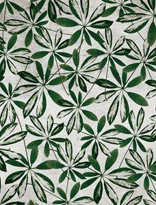 Wall & Deco tapeta liście